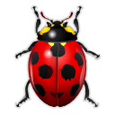 ladybird, Animal, bug, insect Black icon