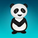 Animal, panda, bear DarkTurquoise icon