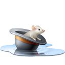 rat, chapeau, pool, hat, eau, souris, Animal, water, Mouse Black icon