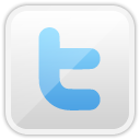twitter, Social networking WhiteSmoke icon