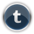 Tumblr Gainsboro icon