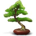 Baobab DarkOliveGreen icon