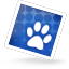 Topodkazy SteelBlue icon