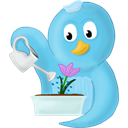 bird, twitter, spring, Flower SkyBlue icon