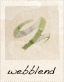 Webblend Linen icon