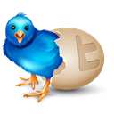 egg, bird Black icon