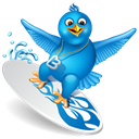 twitter, surfing, bird Black icon