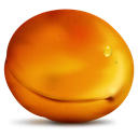 Fruit, Apricot Chocolate icon