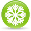 30, christmas YellowGreen icon