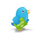 twitter, bird Black icon