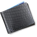 Money, wallet, pay DarkSlateGray icon