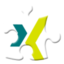 Xing Gold icon