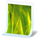 Junior, 106 OliveDrab icon