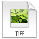 File, z, Tiff Gainsboro icon