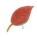 Leaf, Ak Black icon