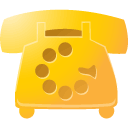 Goog Gold icon