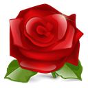 lilly flower, rose, nature, red, Flower, plant DarkRed icon
