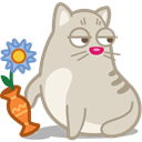 Cat, rascal LightGray icon