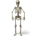 ukraine, Human, death, Hungry, Radiology, food, Bones, starv, Skeleton, starve, Dead, poison, ribs, monster, Avatar, skelet, trouble, zombie, Bone, radioscopy, standing, halloween, scary, deadly Black icon