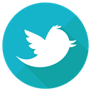 socialnetwork, network, tweet, twitter, bird LightSeaGreen icon