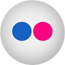 flickr Gainsboro icon
