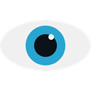 search, Find, view, Eye, see WhiteSmoke icon