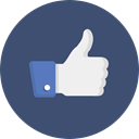 Like, Appreciate, Facebook DarkSlateBlue icon