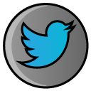 media, social media, Social, twitter, bird, hayal Gray icon
