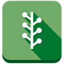 Newsvine DarkSeaGreen icon