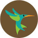 seo, Hummingbird, google DarkOliveGreen icon