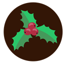 plant, christmas, decoration, holly Black icon