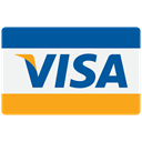 payment, buy, Business, pay, donation, credit, card, Cash, financial, checkout, visa, Finance Teal icon