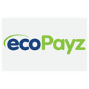 payment, pay, checkout, financial, Cash, ecopayz, donation, buy, card, credit, Business, Finance WhiteSmoke icon