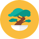Bonsai SandyBrown icon