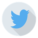 Social, twitter Lavender icon
