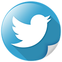 Communication, tweet, twitter, Logo, bird, network SteelBlue icon