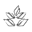 leafmaple, maple, maple leaf, Leaf, organic Black icon