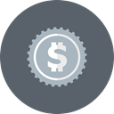Cash, coin, Money, Currency, Dollar DimGray icon