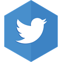 sharing, bird, twitter, Social networking, tweets SteelBlue icon