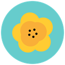 flowers, Flower, Aroma, maquis, nature, blossom MediumTurquoise icon
