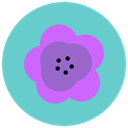 Aroma, Flower, nature, blossom, maquis, flowers MediumTurquoise icon