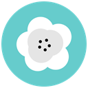 Aroma, Flower, nature, maquis, flowers, blossom MediumTurquoise icon
