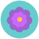 Flower, blossom, Aroma, nature, flowers MediumTurquoise icon
