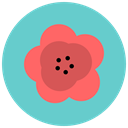 blossom, maquis, Flower, flowers, nature, Aroma MediumTurquoise icon