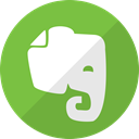 network, Evernote, media, Communication, Social YellowGreen icon