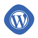 Coding, Blogging, Wp, writing, Development, Logo, Wordpress SteelBlue icon