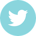 twitter, online, media, Social SkyBlue icon
