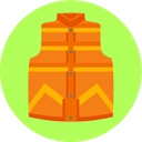 Back to the future, vest, Clothes GreenYellow icon