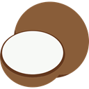 coco Sienna icon