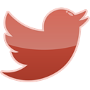 bird, media, twitter, Social IndianRed icon